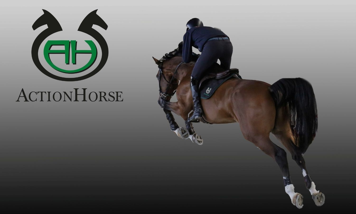Action Horse by Le Selle Italiane